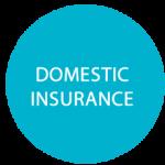 domestic-insurance
